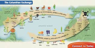 columbian exchange thinglink columbian exchange