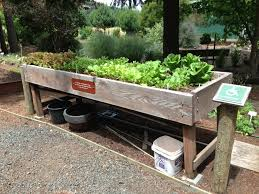 Gardening Resources Archives Page 4 Of 5 Togetherfarm Accessible Raised Garden Beds