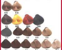 Alfaparf Evolution Hair Color Chart Alfaparf Red Color Chart 1000 Ideas About Hair Color