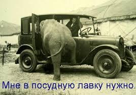 Конгресс США не поддержит сокращение финансовой помощи Украине, - сенатор Шахин - Цензор.НЕТ 9599