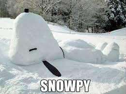 Image result for funny snow pics
