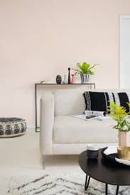 decorating with white pink paint pale
