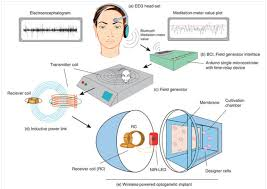 "philosophy of cognitive enhancement pce ""observatory on eeg headset that captured brain wave activities the encephalogram identified mental state specific electrical patterns biofeedback concentration"