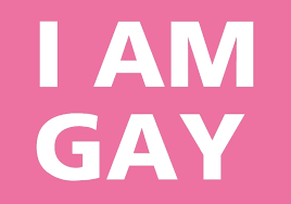 I am a gay
