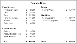 basic balance sheet basic economics balance sheet