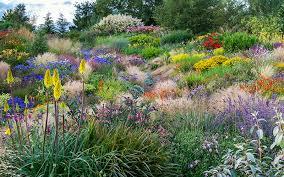 Small Picture Garden Design Magazine Summer 2016 Garden Design