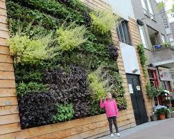 informal green wall indoors. Informal Green Wall Indoors House . R