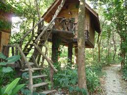 Staying In A Tree House In Khao Sok National Park ThailandTreehouse In Thailand