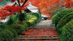 Kyoto Fall Wallpapers on WallpaperDog