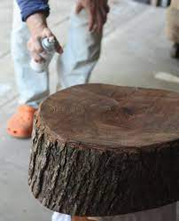 to preserve the bark on a tree stump