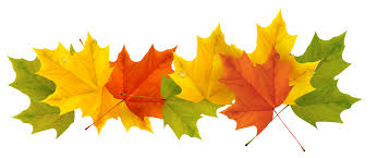 Image result for fall leaves clipart