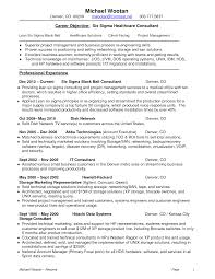 Useful Lean Six Sigma Resume Sample For Your Lean Consultant