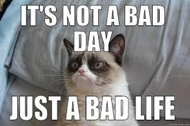 Bad life. - quickmeme via Relatably.com