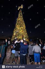 Christmas Tree Lighting Houston Joint Base San Antonio Fort Sam Houston Texas The