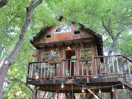 kids tree house for sale. Kids Activity, Large Tree Houses With Classy Lighting Design For Sale House