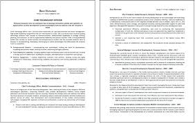 Two Page Resume Sample
