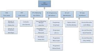 Company Org Chart Organizational Chart What Is An Organization Chart