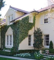 Exterior Window Shutters Traditional With Pond White Flowers - Exterior shutters dallas
