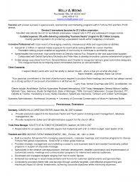 Cfo Resume Rn Job Description Resume Template For Check Printing Ceo Sample 98