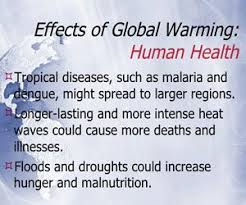 best effects of global warming ideas climate  effects of global warming on human is due to imbalance of nature and causing great damage to our environment which has to be restored and effecting human