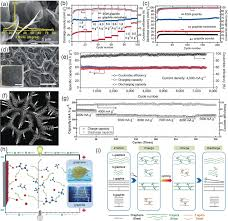 Medchem Designer Crack Strategies Towards Low Cost Dual Ion Batteries With High
