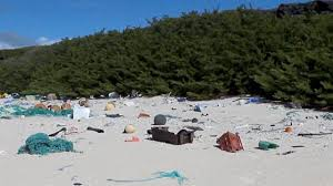 Image result for henderson island, south pacific