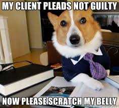 My client pleads not guilty now please scratch my belly - Dog ... via Relatably.com