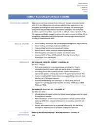 Hr Manager Resume Summary Executive Template Sample Account