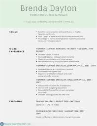 Free Download 58 Resume Templte Model Professional Template Example