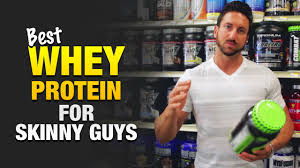best whey protein for skinny guys to build muscle my top 3 choices you