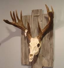 How To Make A Deer Antler Coat Rack Extraordinary 32 Awesome Pieces Of Antler Art
