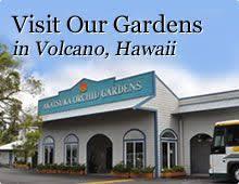 akatsuka orchid gardens coupon codes. visit akatsuka orchid gardens in volcano, coupon codes