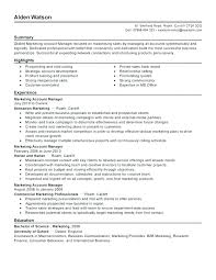 Accounts Manager Resume Sample India Business Management Samples ...