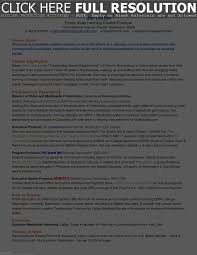 Professional Resume Writers Dallas Resume Work Template
