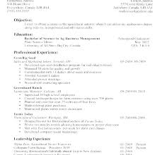 Good Resume Templates Custom Free General Resume Templates Plus Examples Objective Basic Job