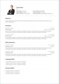 Free Online Resume Writer Wonderful Free Online Resume Templates For Word Mac Template Cv Absolutely