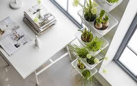 5 great indoor garden ideas for your apartment