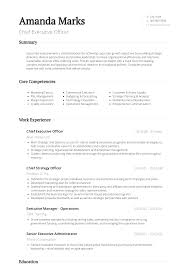 Sample Executive Resume Format Executive Resume Samples Templates Visualcv