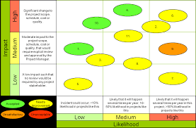 Bubble Chart Risk Management Effective Risk Management For Complex It Projects Sdb Plus