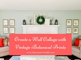 diy create a charming wall collage with vintage botanical prints