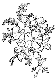 Small Picture Dog Rose Flowers coloring page Free Printable Coloring Pages