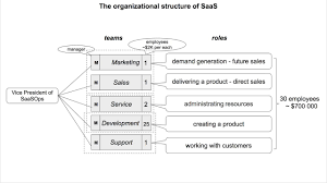 Saas Org Chart The Organizational Structure Of Saas Youtube