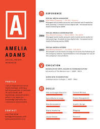 Red and White Two Tone Infographic Resume