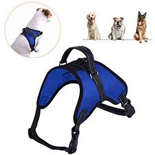 Petlove Dog Harness Size Chart Dog Harness Adjustable Soft Mesh No Choke No Pull