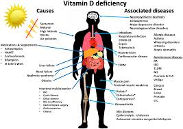Nutrients | Free Full-Text | Immunologic Effects of Vitamin D on Human  Health and Disease | HTML