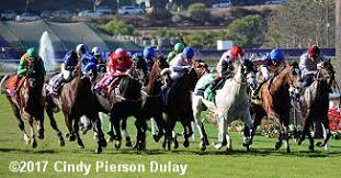 2017 Breeders Cup Charts 2017 Breeders Cup Mile Results