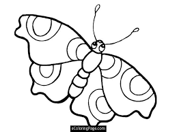 Small Picture Uncategorized Butterfly Big Eyes Coloring Pages For Printable