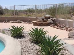 desert backyard landscape theme swimming pool side photo amazing landscaping design with large cactus plant desert garden ideas e25