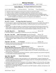 Resume Templates Six Sigma Black Belt Examples Consultant