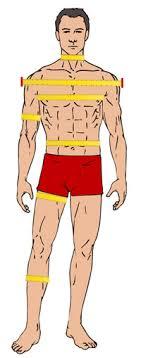 Bodybuilding Body Measurement Chart How To Take Body Tape Measurements Gymjp Com